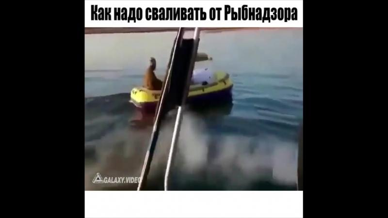 Когда надо сваливать от рыбнадзора