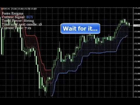 Forex Enigma Review - 200 pips everyday   no experience required
