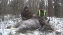 Охота на лося в РБ. Хорошая охота - это не количество мяса, а хорошо проведенное время!