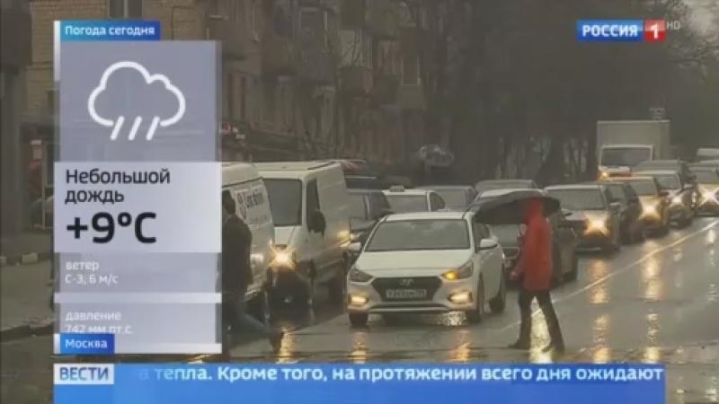 Вести-Москва • Апрельский дождь принес в столицу похолодание: надолго ли?