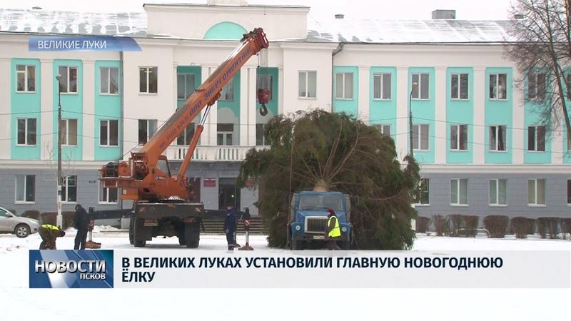 Новости Псков 14.12.2018 / В Великих Луках установили главную новогоднюю ёлку