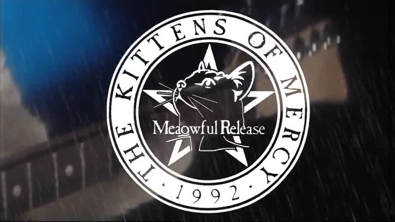 The Kittens of Mercy - This Purrosion