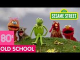 Sesame Street Kermit Sings