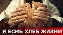 Я есмь хлеб жизни. Священник Игорь Сильченков