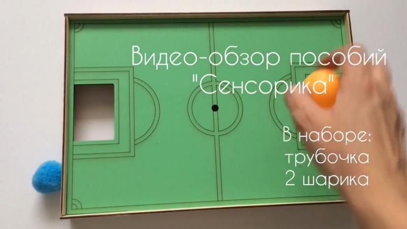 Logopedicheskaya-igra-futbol-_video