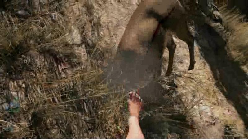 FarCry5 2018-07-13 21 Вытащи оленя