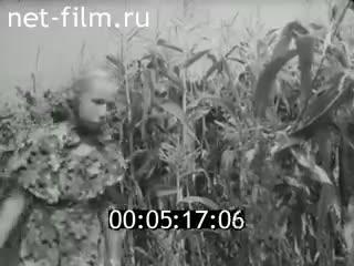 Киноальманах