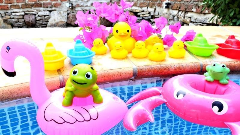 Çizgi film. Renkler ve sayılar. Hayvanlar havuzda eğleniyorlar