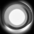 Disclosure альбом Moonlight