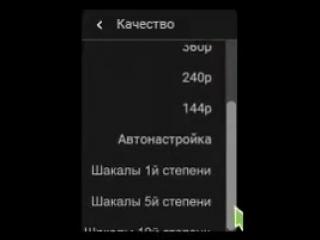 doc200202957_475849680.mp4