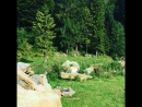 Камянка
