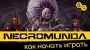 Necromunda: Underhive. Как начать играть.