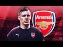 BERND LENO Welcome to Arsenal Crazy Saves Reflexes 2018 HD