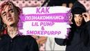 Как познакомились Lil Pump Smokepurpp? / Что их связывает?