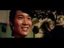 El joven Tigre- Meng Fei 1973