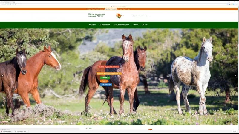Как войти в личный кабинет? happy-horses.ru