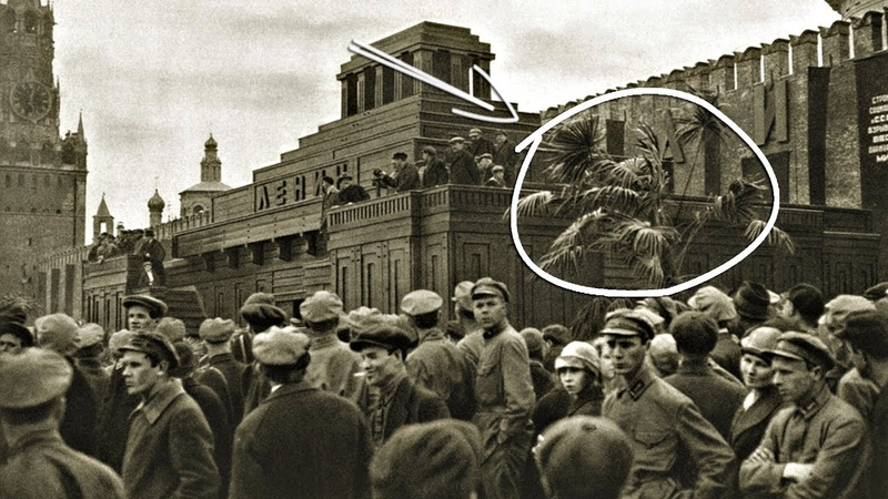 Зимы не было до 1963 года? Пальмы в Москве, только факты