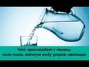Что произойдет с телом, если пить теплую воду утром натощак