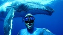 Diver Captures Selfie With Giant Whale