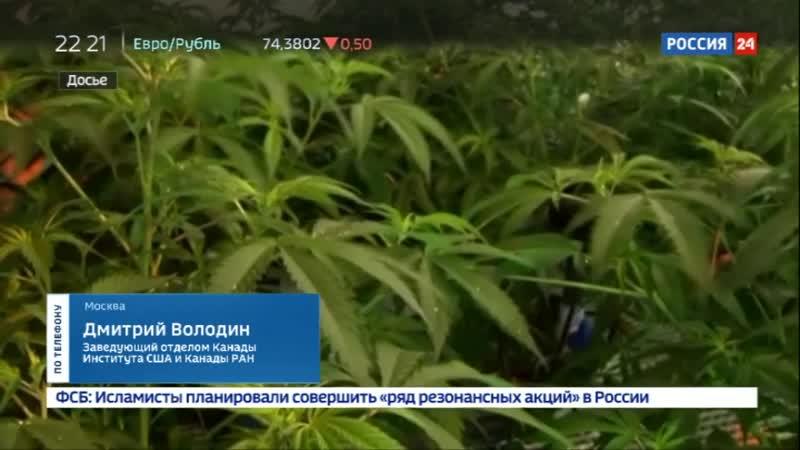 Канадский наркотический бум Как российский бизнесмен снимает с него сливки