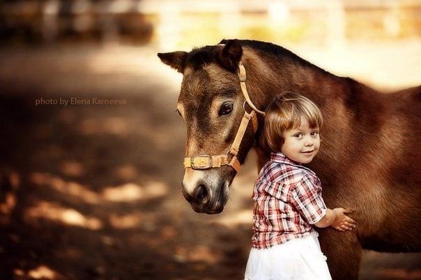 Надо прислушаться к голосу ребенка, которым ты был когда-то и который существует еще где-то внутри тебя. Если мы прислушаемся к ребенку внутри нас, глаза наши вновь обретут блеск. Если мы не утеряем связи с этим ребенком, не порвется и наша связь с жизнью