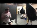 Тренировка Сауля Альвареса