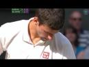 Novak Djokovic vs Juan Martin del Potro - Wimbledon 2013 SF
