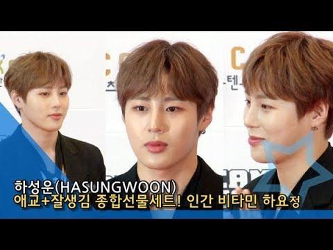 [NI영상] 하성운(HASUNGWOON), 애교잘생김 종합선물세트… 인간 비타민 하요정 '심쿵해' (2019 46