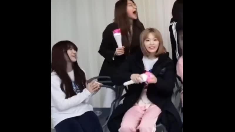 Sakura nako danced to bon bon chocolat