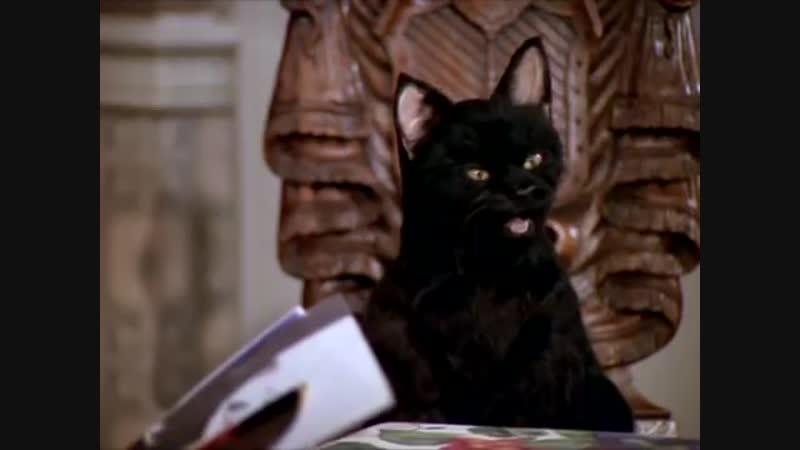 Кот Сэйлем - лучшие моменты - Сабрина маленькая ведьма (ч3)