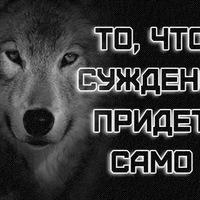 Анкета Вася Иванов