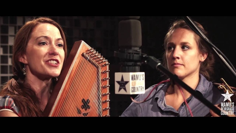 Empty Bottle String Band - Wildwood Flower [Live at WAMU's Bluegrass Country]