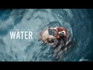 Multifandom 13 | Blood in the water