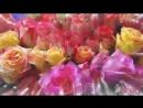 картинки цветов красивые с надписями 9 тыс. видео найдено в Яндекс.Видео-ВКонтакте Video Ext.mp4
