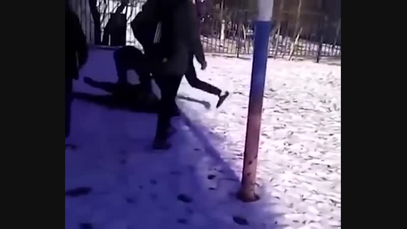 В Новошахтинске школьники избили новенького и прыгали у него на голове, когда тот уже потерял сознание.   Шакалы блять.