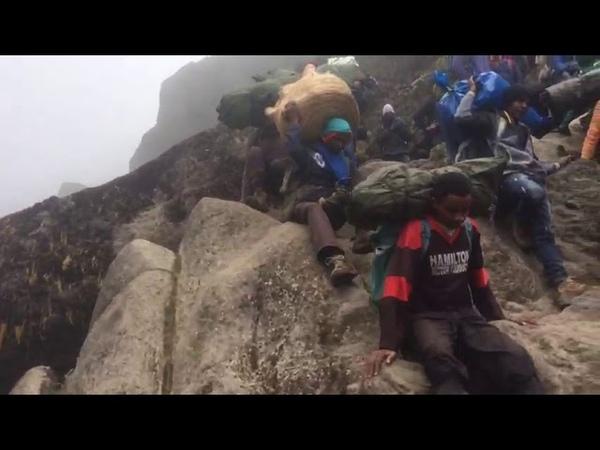 Mount Lemosho, Kilimanjaro.