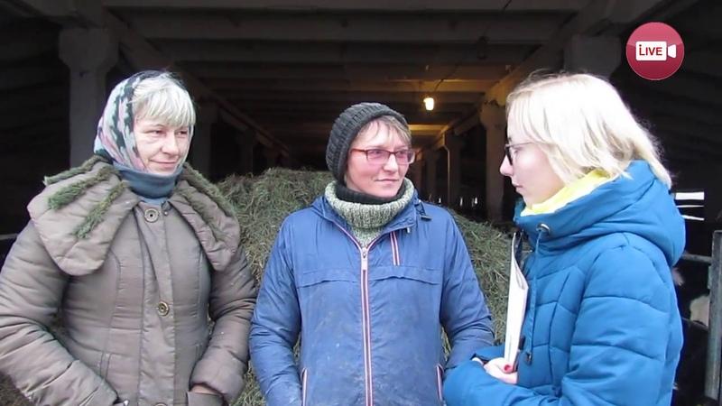 В Деревновском дояркам платят 500 рублей в месяц, им маловато