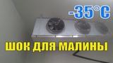 Камера хранения и шоковая заморозка для малины 4k