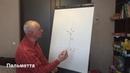 Схема формировки плодового дерева пальметта