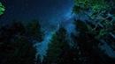 Milky Way · coub, коуб