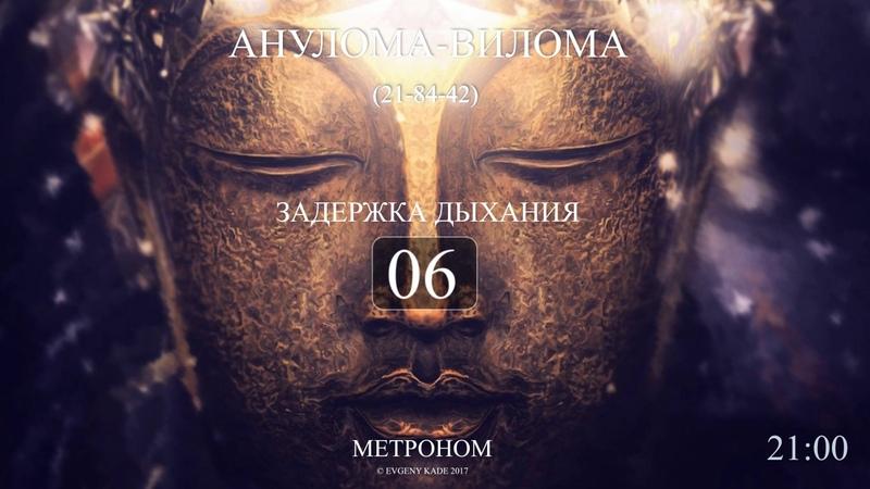 Анулома Вилома 21-84-42 (Метроном 2017) полный