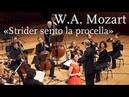 """W A Mozart Strider sento la procella"""" from Lucio Silla Regula Mühlemann"""