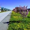 Коттеджный  поселок  Нанино Великий Новгород