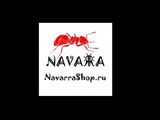 Еженедельный розыгрыш колонии муравьев от Navarrashop.ru