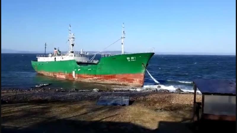 Во Владивостоке штормовым ветром на мель выбросило северокорейское судно