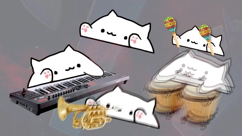 Bongo cat Ali-A Intro