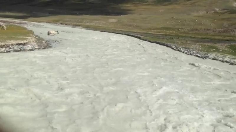 Река Цагаан гол Молочная река