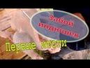Забой индюшек бройлерный индюк Bronza708 Первые итоги/ Мое хозяйство