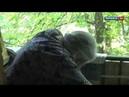 Луганск 24 Обстрел кв Дружба и кв Ватутина 2 августа 2014 г