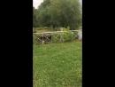 Школьники из Васькино прыгают в Ниагарский водопад